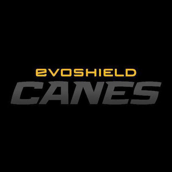 Evoshield Canes