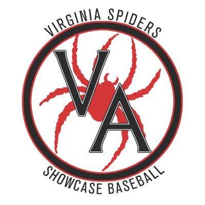 Virginia Spiders